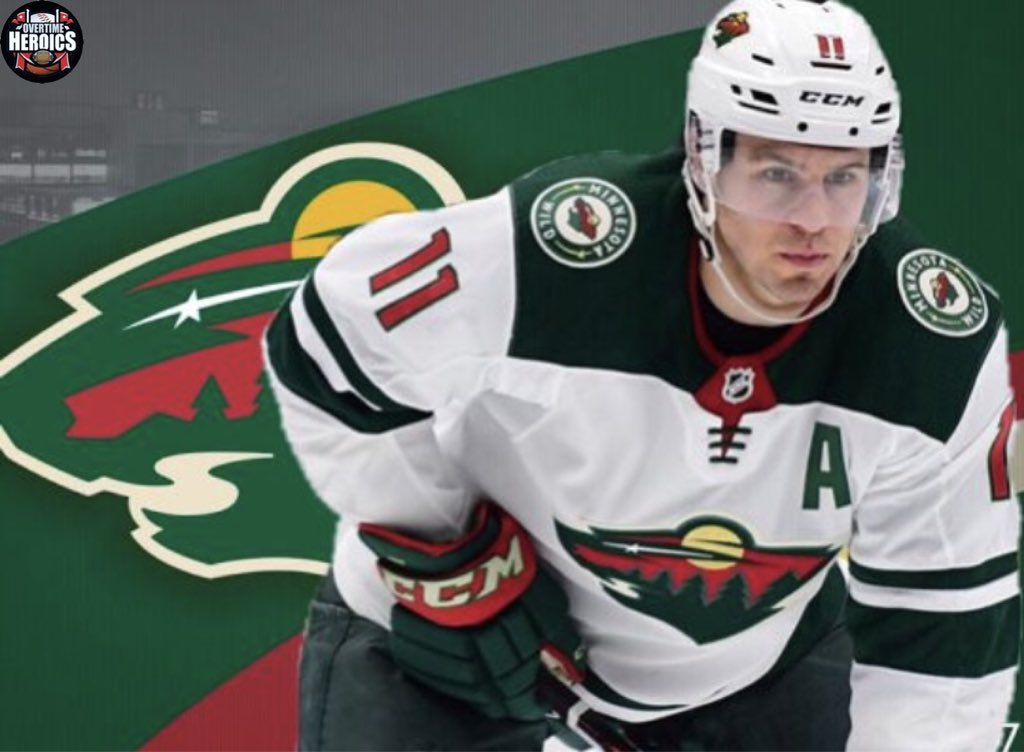 Minnesota Wild Season Review